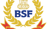 BSF Group C Recruitment 2021 - Apply Online for 33 Vacancy 1 jobs 2019 13
