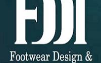FDDI Executive Director Recruitment 2020 - Apply for 12 Posts 3 FDDI